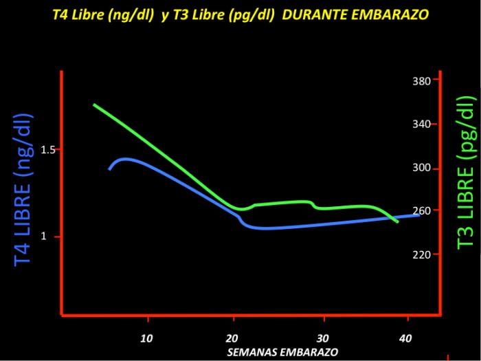 FIGURA 3. A medida que aumentan los valores de T4 y T3 totales, disminuye la fracción libre de ambas hormonas (T4 libre en azul y T3 libre en verde).
